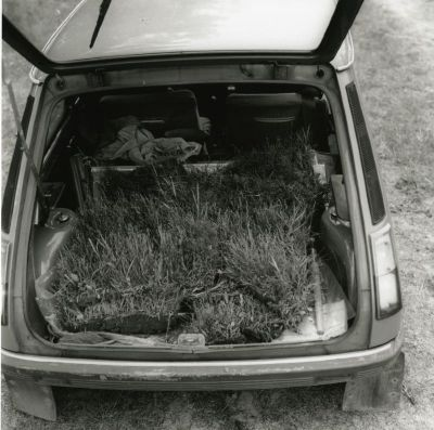 Collected grass ...