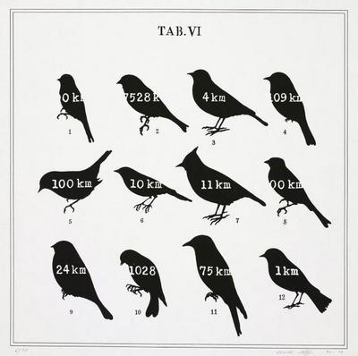 Visual Aids, TAB. VI