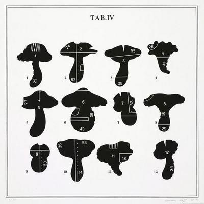 Visual Aids, TAB. IV